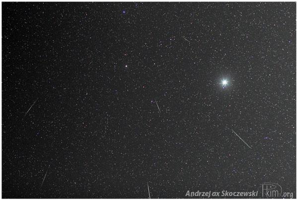 Składanka 6 Geminidów z 2013 roku z nocy maksimum - Canon 450D/50mm@2.5/ISO800/30sekund